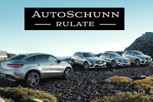 auto Mercedes-Benz rulate